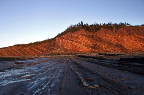 Joggins_Fossil_Cliffs_Canada_06.jpg