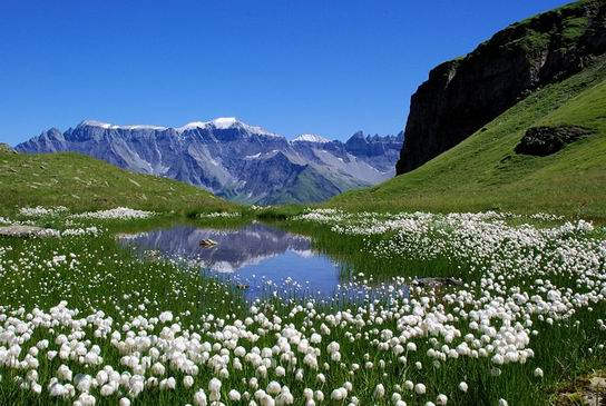 TectonicArenaSardona_Swiss_04.jpg