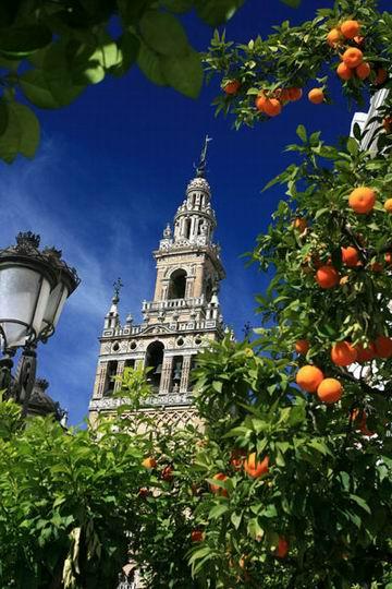 WH33_Seville_Spain_108.jpg