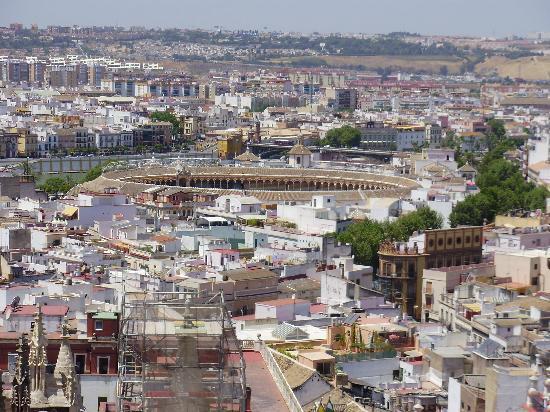 WH33_Seville_Spain_111.jpg