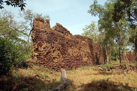 Ruins of Loropeni_BurkinaFas0_05.jpg