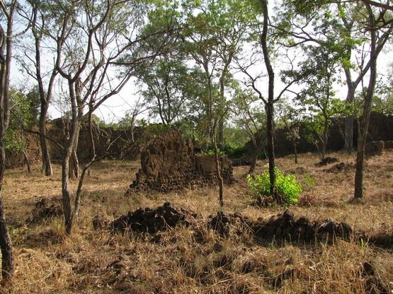 Ruins of Loropeni_BurkinaFas0_06.jpg
