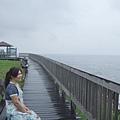 一號再次看海