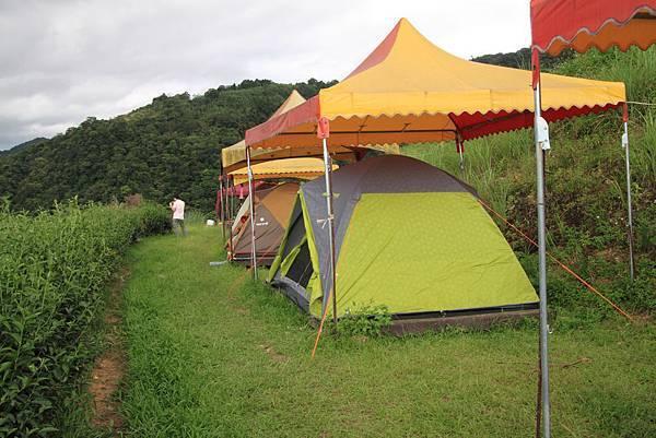 玉蘭茶園露營007