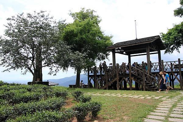 玉蘭茶園露營005