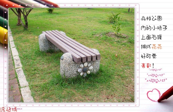 DSC02322.jpg