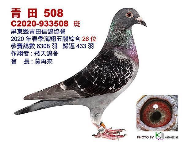 26青田2020春-7-12x15-1張.jpg