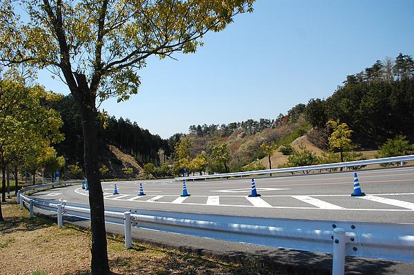 Photo 188.JPG