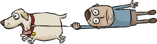 dog-not-handling-the-leash-well