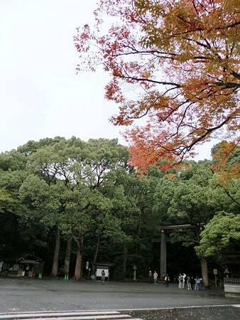 Day02-1明治神宮 (69)