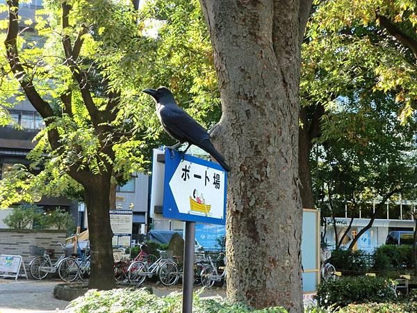 上野恩賜公園 (1)