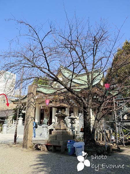 難波八阪神社 (2)