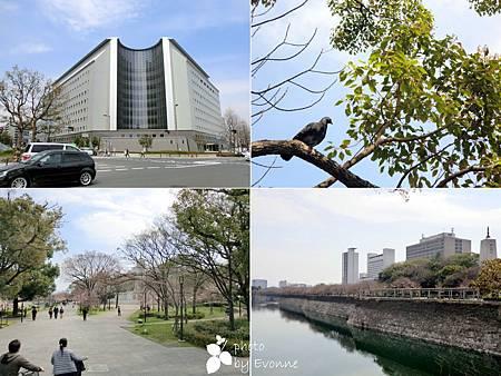 大阪城 (5)