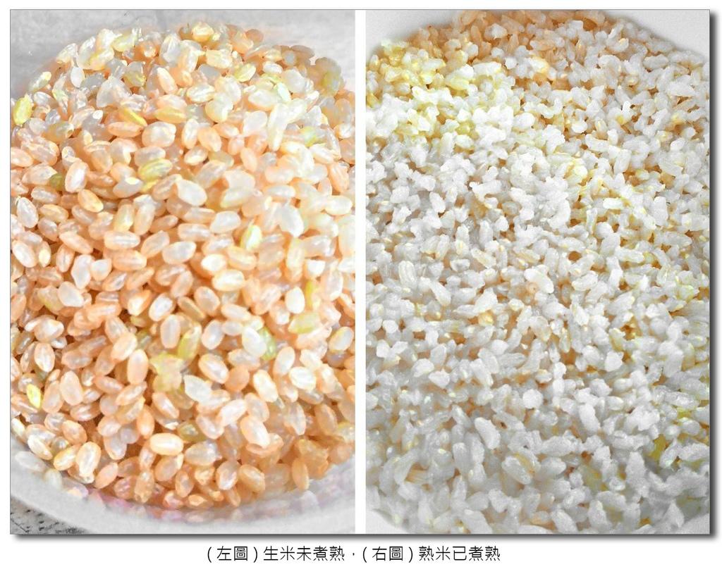 美國玄米2