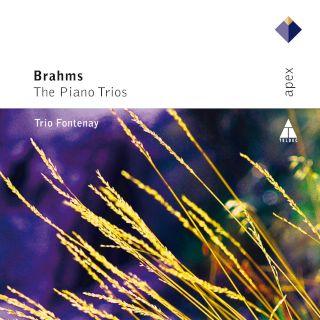 Trio Fontenay-Brahms Piano Trios (2CD).jpg