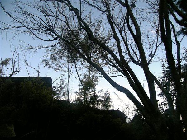 07-02-07_16-55.jpg