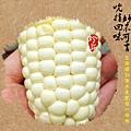 北海道白粟米