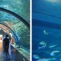 北海道登別海洋樂園