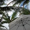 2009.01.26 長灘島Boracay (26).jpg