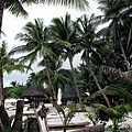 2009.01.27 長灘島 Boracay (20).jpg