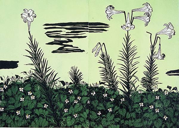 魚腥草與野百合
