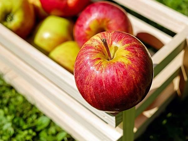 apple-1589869_1920.jpg
