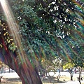 C360_2014-01-31-11-31-27-149.jpg