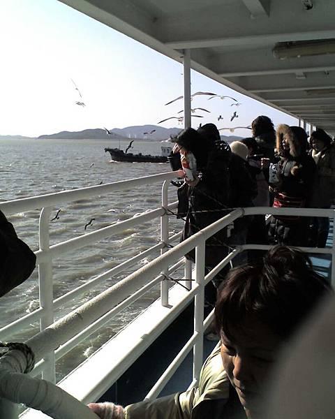 濟扶浦海鷗船
