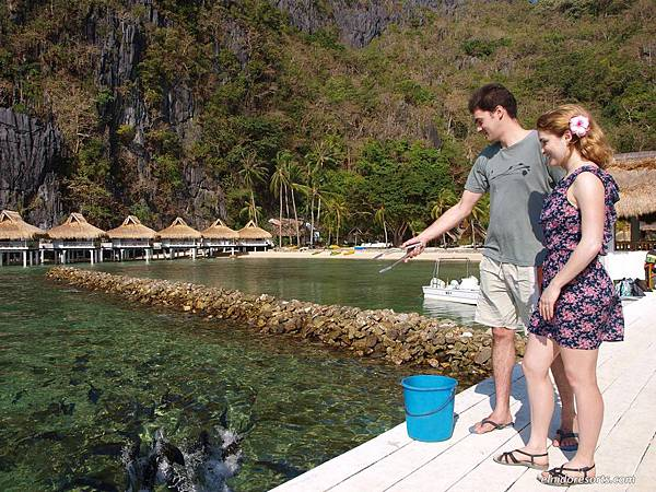 01-el-nido-resorts-activities-jack-feeding-by-the-miniloc-island-pier.jpg