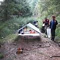 於林道上紮營