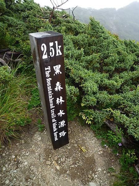 1.9k黑森林水源下切路