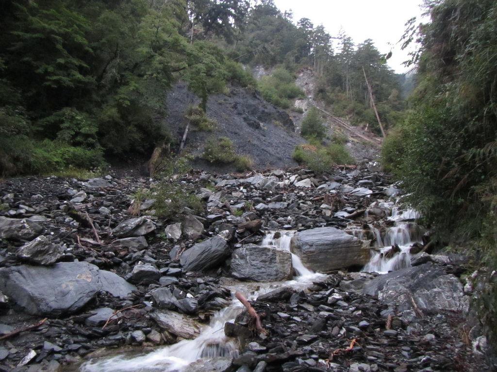 塔次基里溪支流