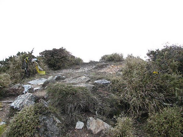 丹大山3325m,無基點,此行第一座百岳