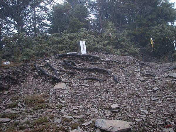 D5從營地走一分鐘就到義西請馬至山3245m,不銹鋼基點