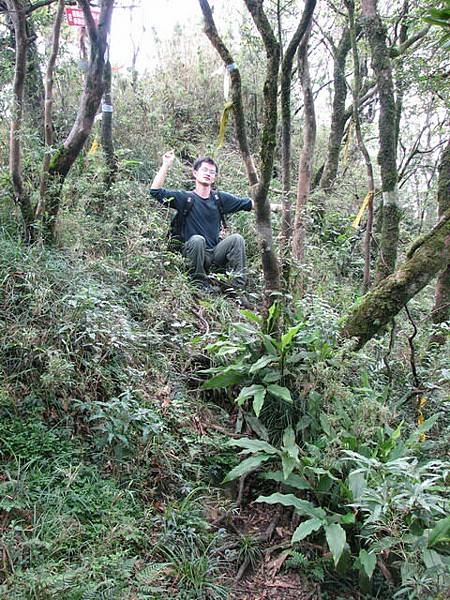 1520,直走往樂佩山,取右下雲森瀑布