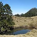 新達池與池有山