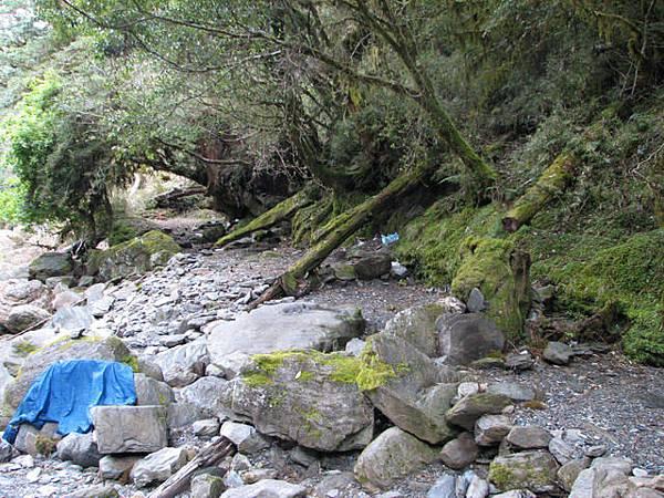 溪邊還有幾塊小營地