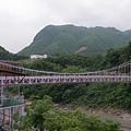 紫色的橋身