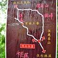 整路樹林都有這種路線圖