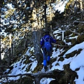 往山屋的森林中還是有積一點點的雪
