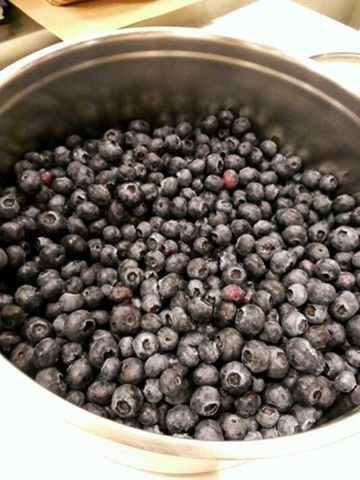 豆豆熊-藍莓重乳酪起司蛋糕(3)