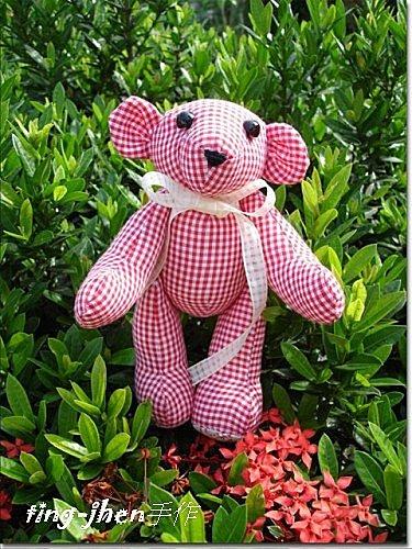 泰迪熊(2)