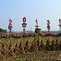 2012嘉義花海節(17).jpg
