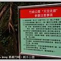 嘉義竹崎。親水公園(8)