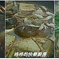 20100219麻辣臭豆腐做法2