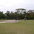 P1000854.JPG