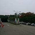 IMAG0057.jpg