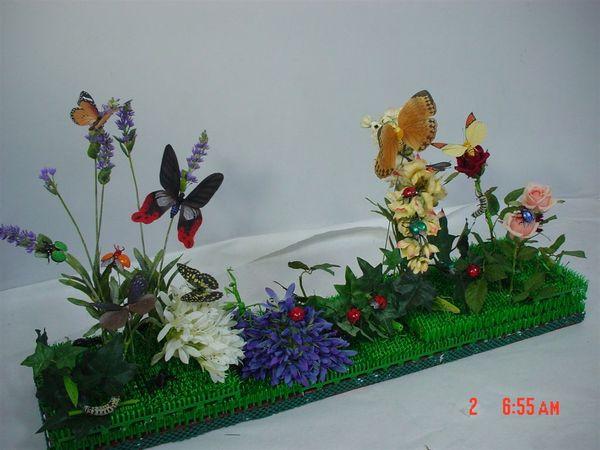美麗的蝴蝶花園