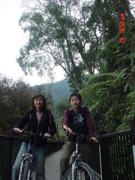 樹林騎腳踏車