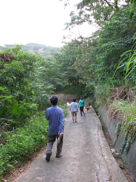田裡散步去~